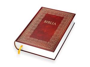 8ea3bb04060cd Biblia Domowa w kolorze brązowym - Stary i Nowy Testament